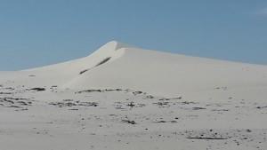 Namaqualand dunes